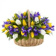 """Корзина с тюльпанами и ирисами """"Совершенство"""""""