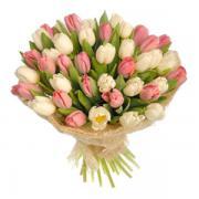 """Букет из  41 тюльпана """"Нежность весны"""""""