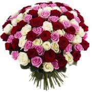 101 роза  60 см Микс 2