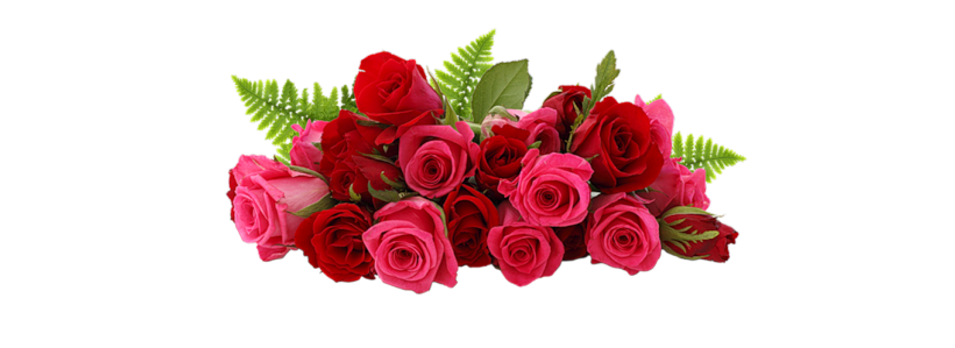 Цветы для прекрасных дам к 8 марта